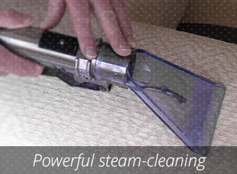 Power Steam Cleaning Plantation