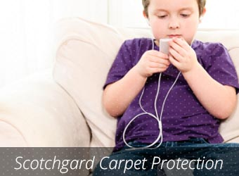 Scotchguard Carpet Protection Plantation
